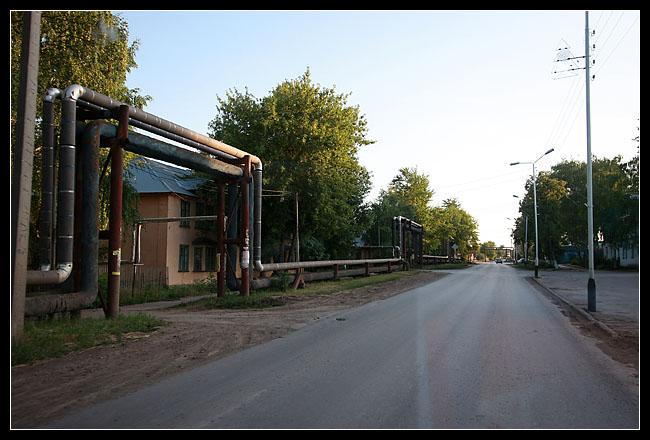 IMG_7459